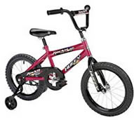 "Boy's 16"" Bike (Available With or Without Training Wheels)"